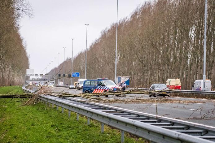 Een ravage op de A58.