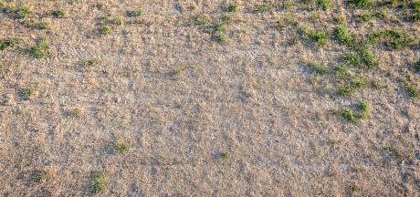 Nog niet alle voetballers  het verdorde gras op in Zuidoost-Brabant