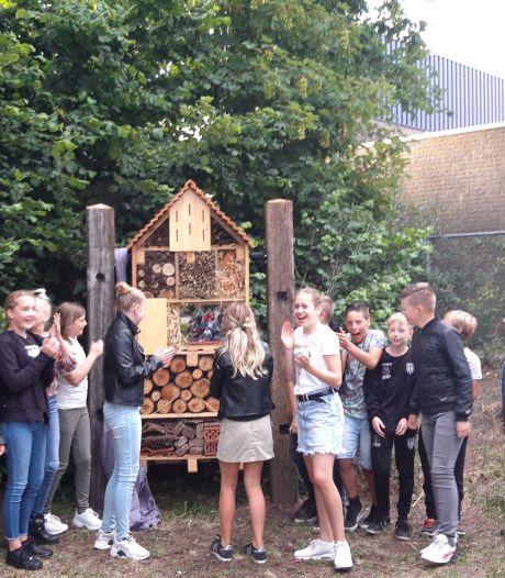 Groep 8 van De Veenbrug in Daarlerveen maakt insectenhotel als afscheidscadeau