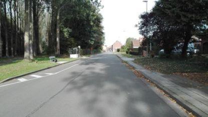 Stuk Sint-Livinusstraat krijgt nieuwe asfaltlaag