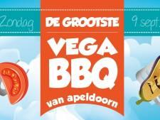 Zelfs stoken gebeurt duurzaam bij vega-bbq in Apeldoorn