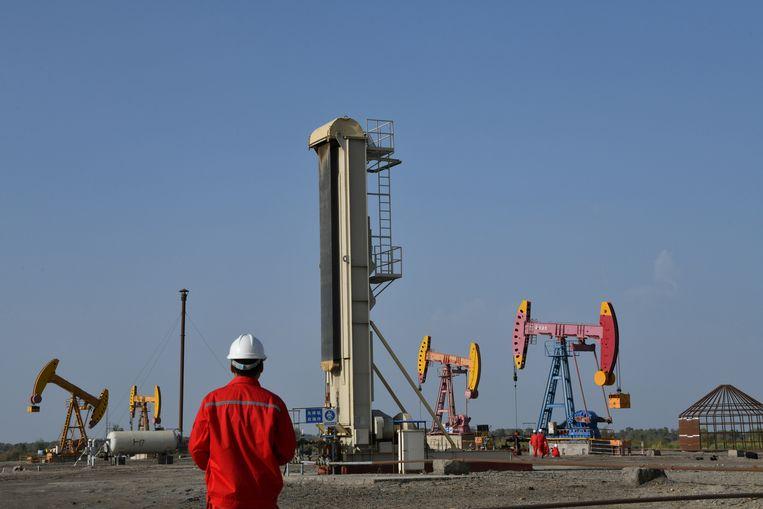 De Chinese petroleumfirma CNPC wil olie ontginnen in het oosten van Niger.