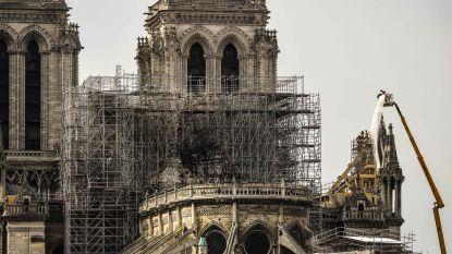 """""""Grote paraplu"""" moet Notre-Dame beschermen tegen de regen"""