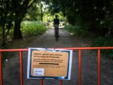 300-tal bomen moeten gerooid worden, maar Groendienst heeft handen vol