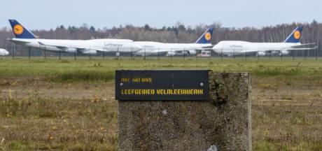 Twente Airport vindt in zeldzame veldleeuwerik bondgenoot voor zeer grote vliegtuigen