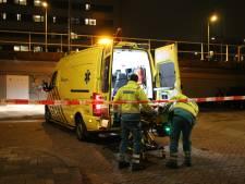 'Wildplasser' valt van Sebastiaansburg en raakt zwaargewond