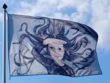 Kunstzomer in Zeeland; Nico Out nam een kijkje bij twee exposities