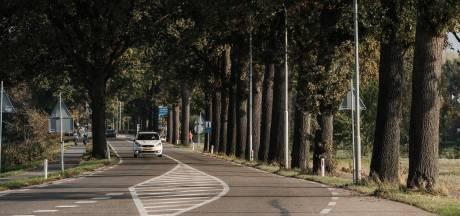 Fietspad Arnhemseweg in Zevenaar deels afgesloten: fietsers omgeleid