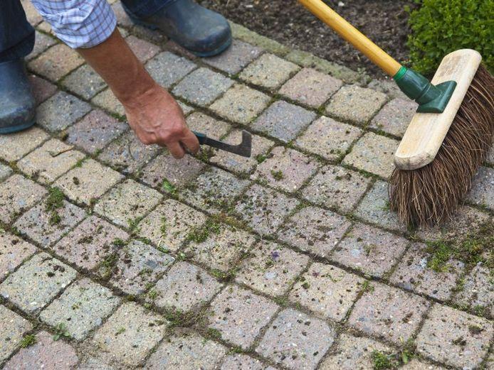 Désherber les joints de votre terrasse ? La méthode la plus simple consiste à arracher les mauvaises herbes