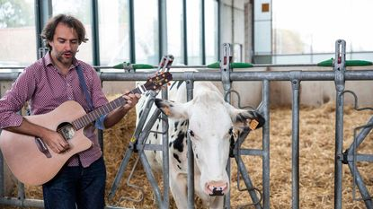 """""""Vertroetelde koe geeft veel meer melk"""""""