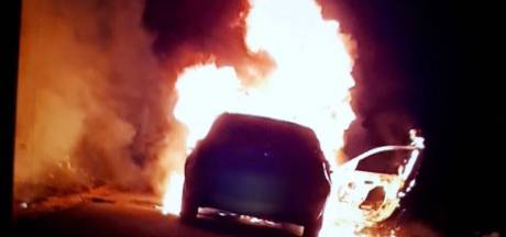 Gestolen auto en bomen in brand bij Rijkerswoerdse Plassen