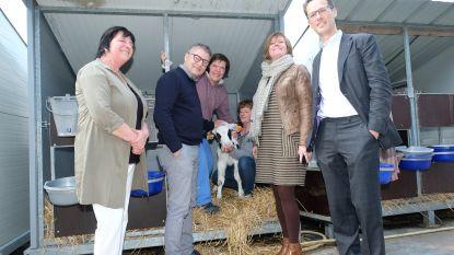 """Vlaamse regering subsidieert zorgboerderijen: """"Belangrijke traditie mag niet verloren gaan"""""""