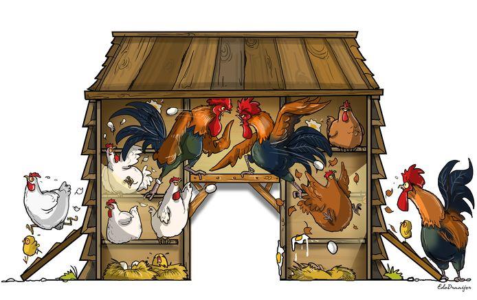 Illustratie Edo Draaijer.