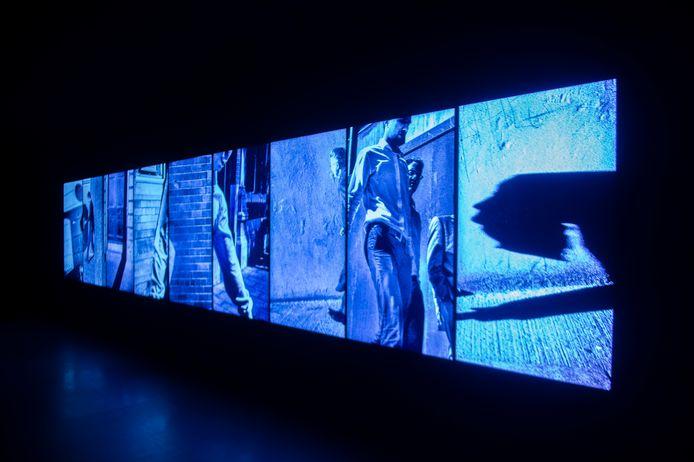 Van 14 januari 2021 tot en met 27 februari 2021 toont het FOMU de installatie 'Made In Dublin' op de Wapper 7, in het centrum van Antwerpen.