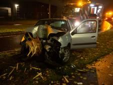 Automobiliste mist bocht en velt boom in Roosendaal
