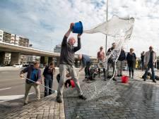 Inzamelactie voor schoonmaken Arnhemse 'Blauwe Golven' geslaagd