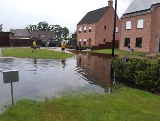 Stad neemt rist maatregelen om wateroverlast in Ten Aard aan te pakken