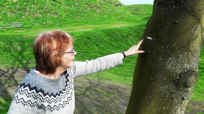 Ireen Weug bevestigde aan 35 bomen een ode aan de lente.
