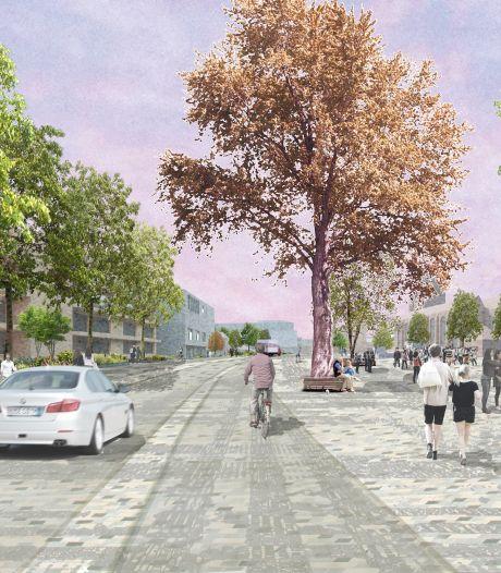 College Tilburg maakt haast met eerste fase Stadsforum, Stadhuisplein als eerste aan de beurt