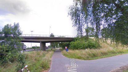 Parallelweg van E17 wordt Wilgenstraat om verwarring bij hulpdiensten te voorkomen