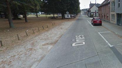 Grasbetontegels voor parkeervakken Dries