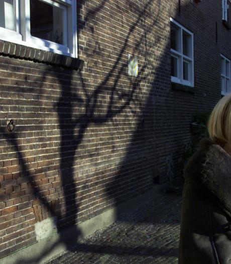 Oud-directeur theater Het Klein in Eindhoven overleden
