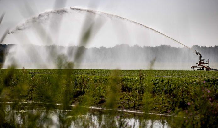Sproeien met oppervlaktewater, zoals uit sloten en rivieren, blijft voorlopig verboden in de Achterhoek. Foto ter illustratie.