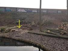 Foutje: 12 bomen onterecht gekapt langs de A10