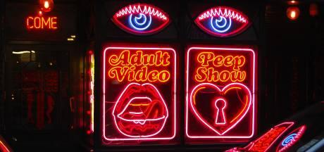 Amerikaanse rechter: 'Ouders moeten zoon terugbetalen voor vernielen pornocollectie'