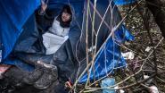 Opnieuw migrantenkamp ontruimd in buurt van Calais
