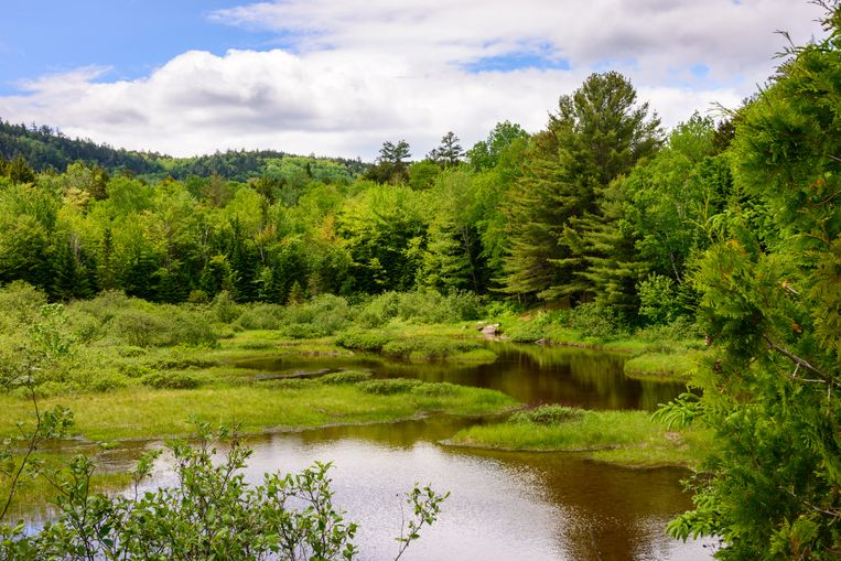 Katahdin Woods and Waters National Monument.