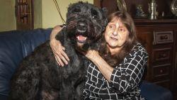 """Iris (65) mag hond niet meenemen naar nieuwe sociale woning, """"maar ik laat Rocky niet achter!"""""""