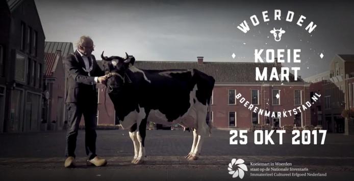 In de ludieke video vangt burgemeester Molkenboer een koe op die zich vergist in de datum.