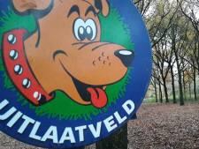 Bertje en het grote hondenpoep mysterie