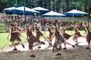 Een archieffoto uit 2017. Een dansgroep van Studio 026 treedt op tijdens het Fragmentenfestival.
