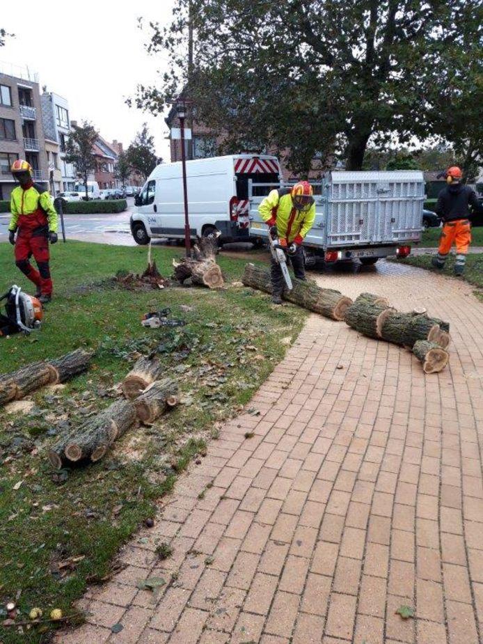 In Oostende wordt volop gewerkt om het openbaar domein weer spic en span te krijgen.