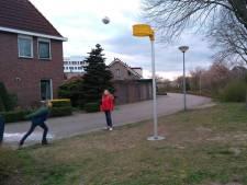 Achterhoekse sportclubs inventief in coronatijd: Online schaken en korfballen in de tuin
