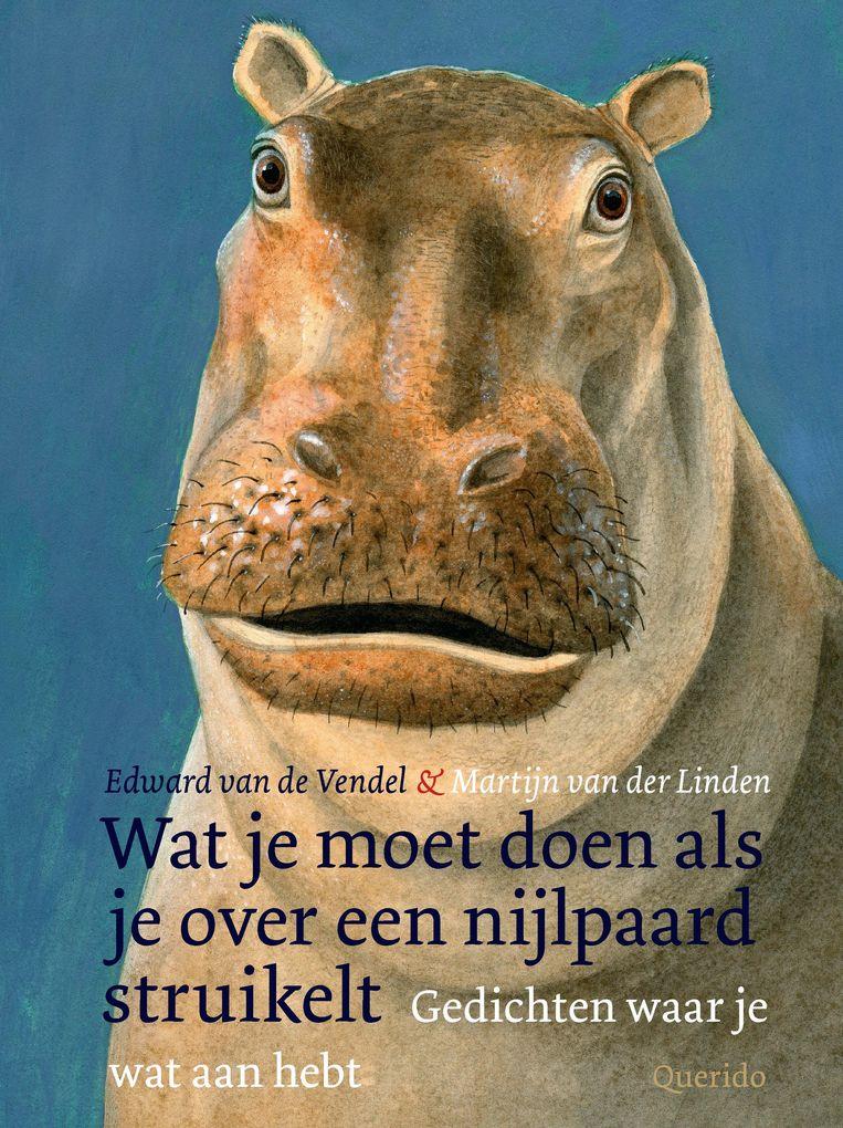 Edward van de Vendel: Wat je moet doen als je over een nijlpaard struikelt.  Querido, € 17,99 Beeld null
