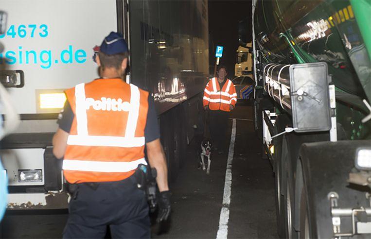Op de snelwegparking van de E17 werden vrachtwagens gecontroleerd met een speurhond.