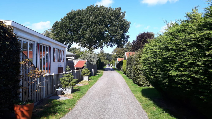 Zeshonderd stacaravans en chalet staan er op camping Duinrand in Burgh-Haamstede. Ze moeten naar verluidt plaatsmaken voor luxe vakantiehuisjes.