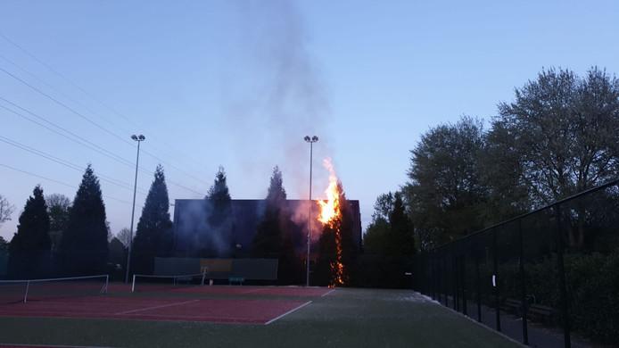 De brandende coniferen in Bemmel.