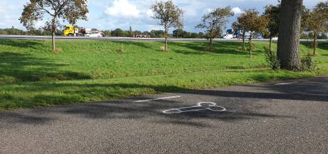 Mysterieuze tekeningen van penissen op Rijksweg in Nijeveen, gemeente grijpt in