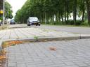 De locatie op de Amsterdamsestraatweg in Utrecht waar de 15-jarige Ruiz in januari 2019 werd aangereden.