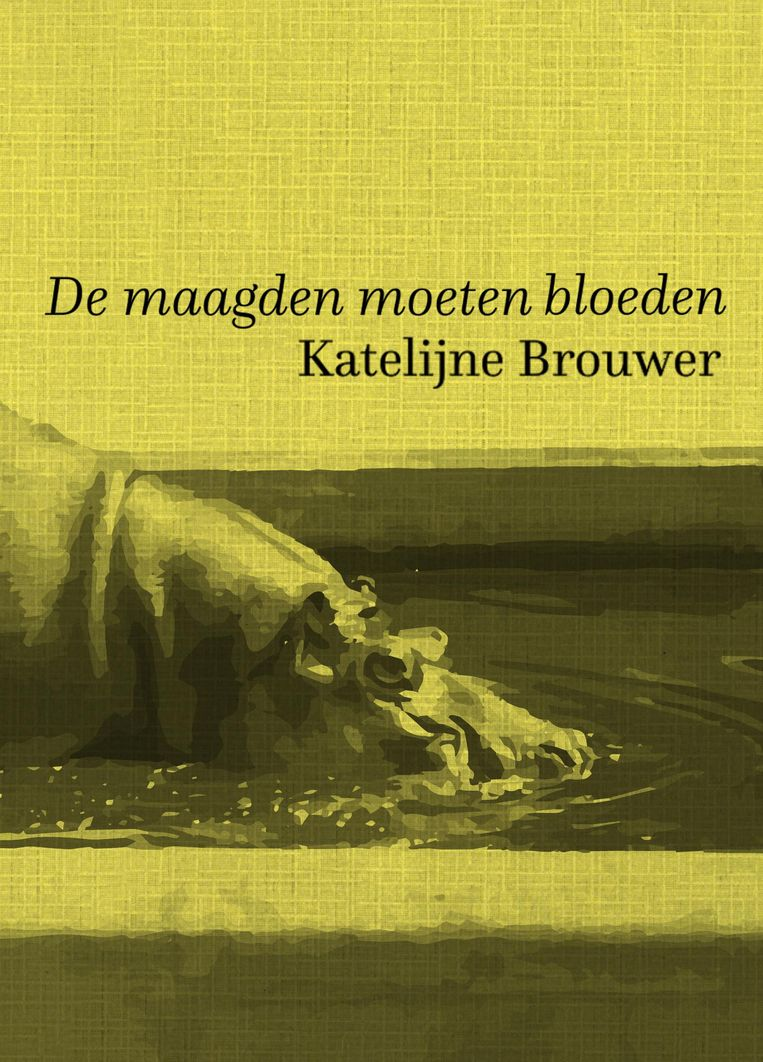 Katelijne Brouwer De Harmonie, euro 15,90 Beeld