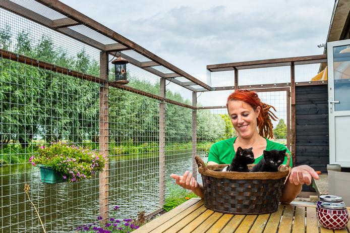 Maaike Rijpstra vangt in haar Haastrechtse woning liefdevol kittens op die bij de dierenopvang in Gouda binnenkomen.
