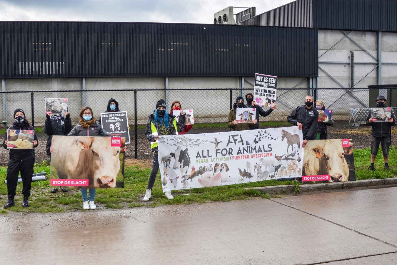 Actievoerders van Animal Rights en All for Animals voeren actie aan slachthuis Moerbeko in Zele.