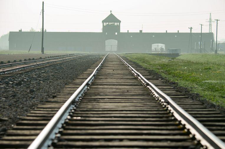 """Abel de Jong: """"Het lijkt mij onwaarschijnlijk dat mijn vader bij Mengele alleen schedels van zigeunertweelingen heeft opgemeten."""" Beeld EPA"""