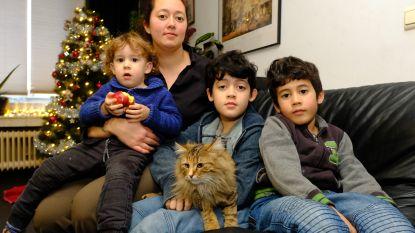 """Weggelopen kat keert na vijf jaar terug: """"Mooiste kerscadeau dat we konden krijgen"""""""
