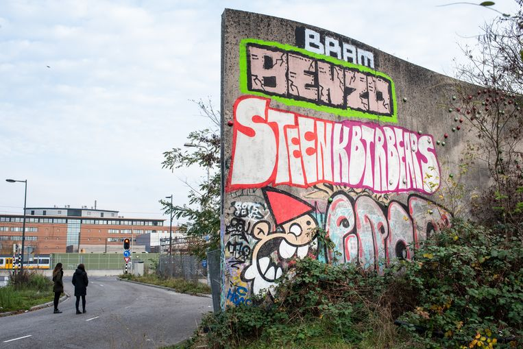 Graffiti van KBTR, kabouter. Locatie: Jan van Foreestraat Utrecht, het muurtje achter Centraal Station en Rabobank hoofdkantoor.  Beeld Simon Lenskens