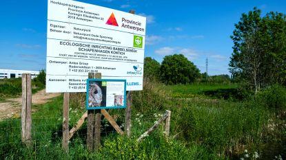 Provincie geeft subsidie van 17.943 euro voor inrichtingswerken in natuurgebied Schapenhagen